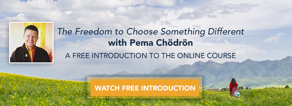 The Freedom to Choose Something Different - Get Started