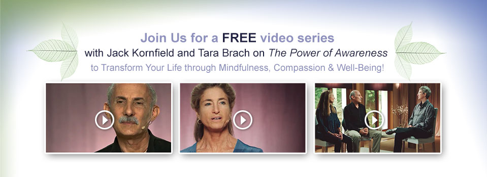 Power of Awareness - FREE Video Series