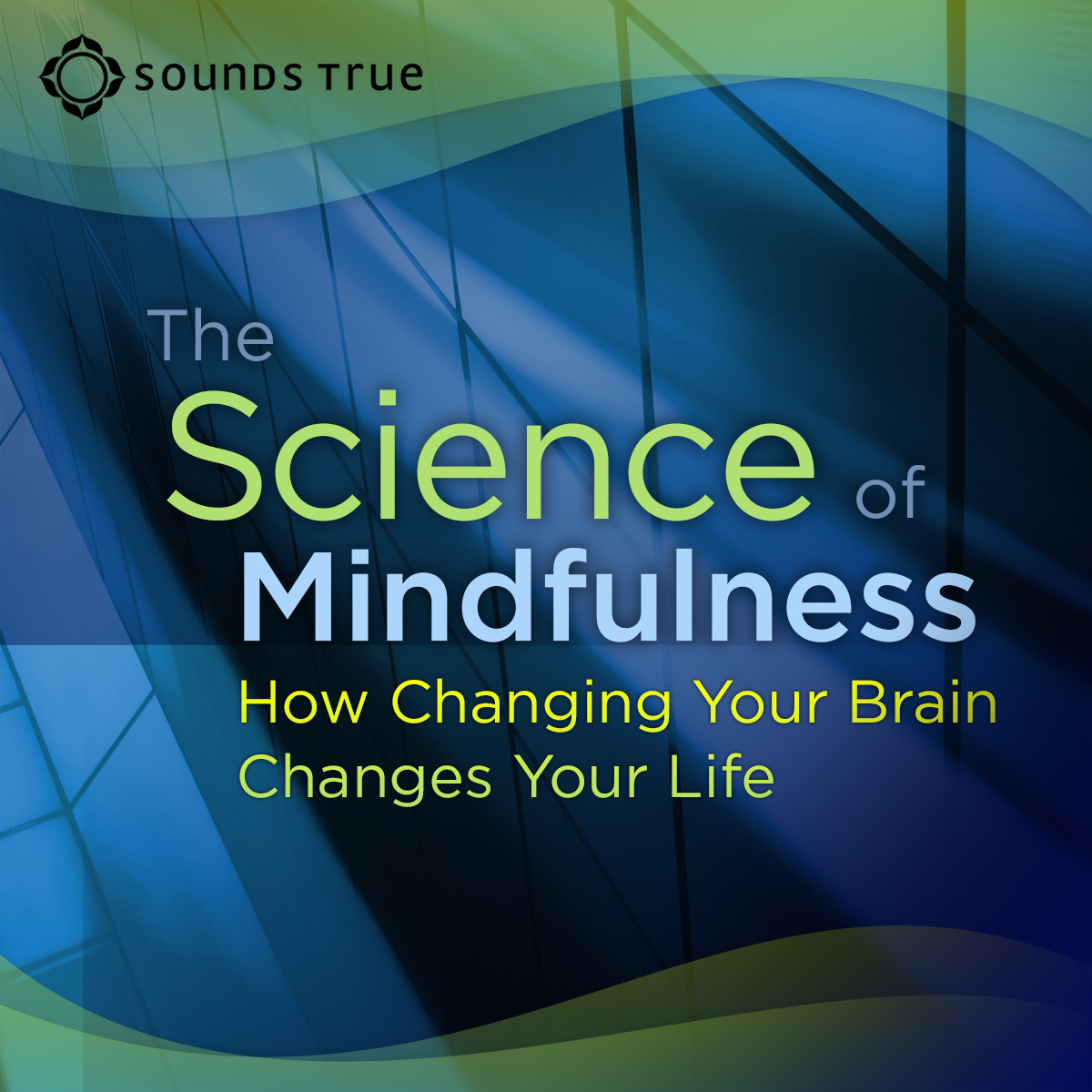 The Science of Mindfulness: How Changing Your Brain Changes Your Life