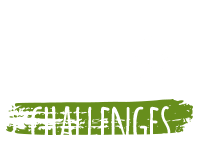 learn through challenges icon
