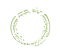 stay present to experience icon