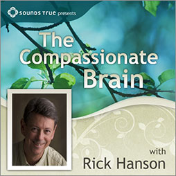 the cover of Rick Hanson's The Compassionate Brain Course that has Rick Hanson's photograph and a background with tree branches covered green leaves