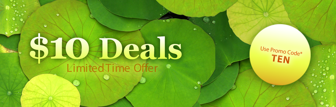 $10 Deals - Limited Time Offer - *Use Promo Code: TEN
