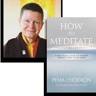 Pema-Chodron-book-130520.png