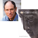 joseph-goldstein_book-131001.png