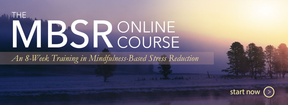 The MBSR Online Course - Start Now