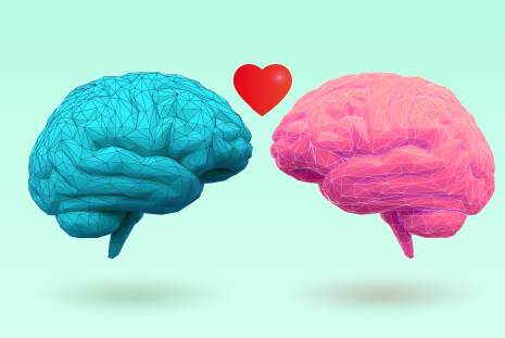 Two brains in love