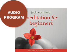 Meditation for Beginners Bonus
