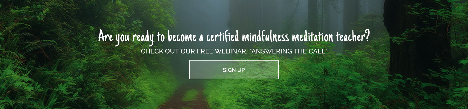 The Mindfulness Meditation Teacher Certification Program
