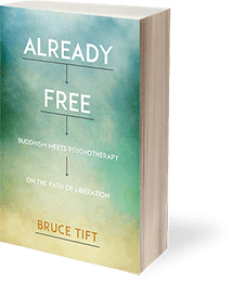 Already Free book