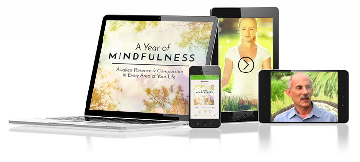 Year of Mindfulness product photo